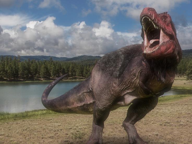 dinosaurs in the wild.jpg