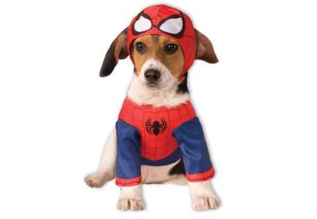 dog spiderman costume