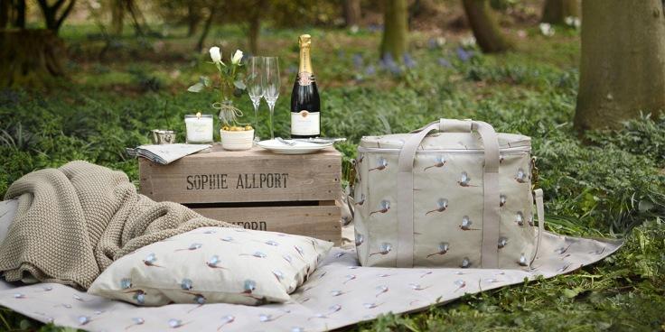 sophie allport picnic