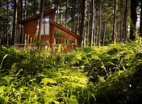luxury break for 4 with forest holidays