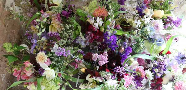 hand tied bouquet from common farm flowers