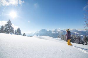 luxury alpine